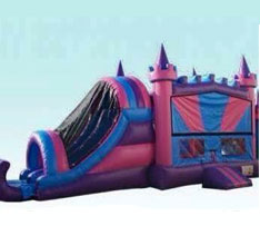 Pink Combo Bounce House