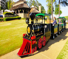 Trackless Train Ride